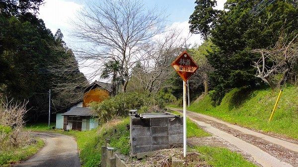 2.林道.jpg