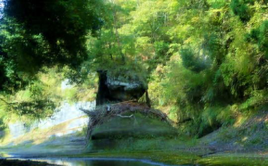 11.犬岩.jpg