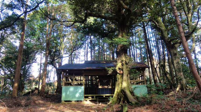 4.上新田浅間山.jpg