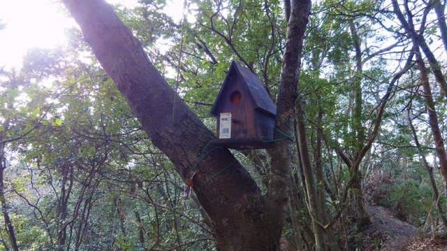 4.小鳥小屋.jpg